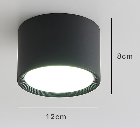 LED Simple Ceiling Light